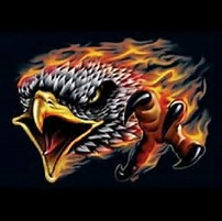 FLAMING EAGLE HEAD 2