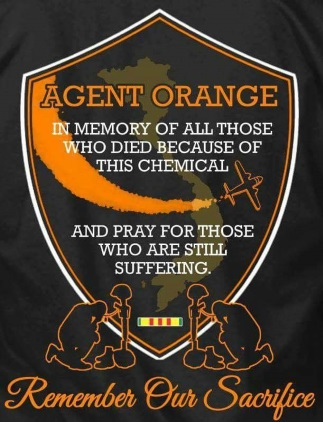 agent orange patch
