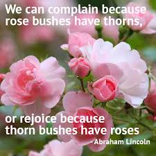 Abraham Lincoln on roses Google images
