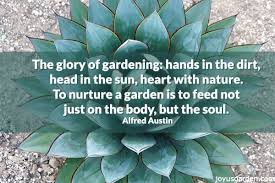 The Glory of Gardening Alfred Allen Google Images