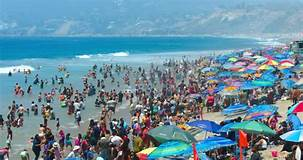Beach at Los Angeles Google Images