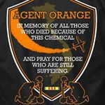 Agent Orange Patch and pray for those who are still suffering google images